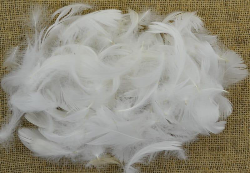 55201 Piórka Dekoracyjne Białe 190 Sztuk